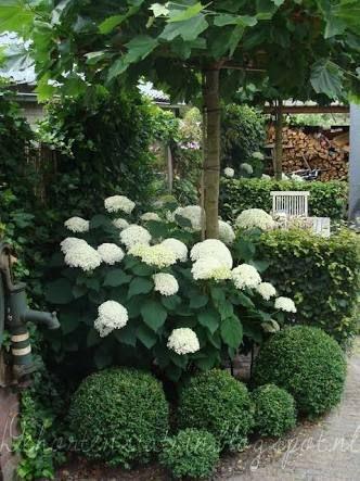 Zahrada geometrická - Obrázek č. 1
