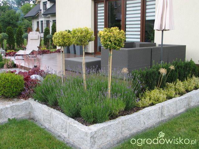 Zahrada geometrická - Obrázek č. 12