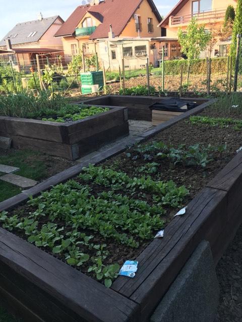 A zahradka