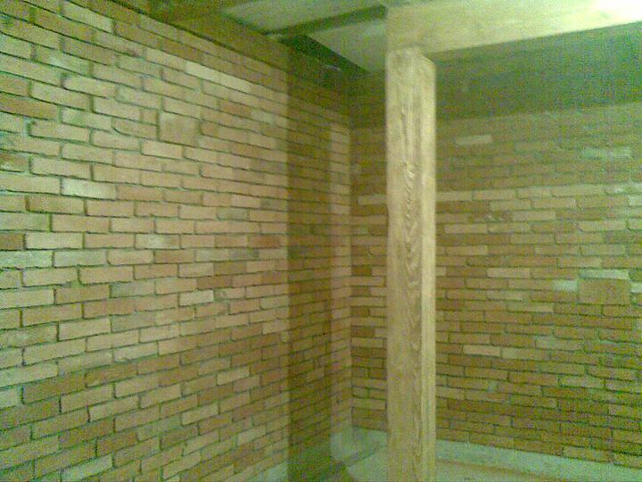 ..domcek - ..vysnivana tehlova stena a nase buduce schodisko