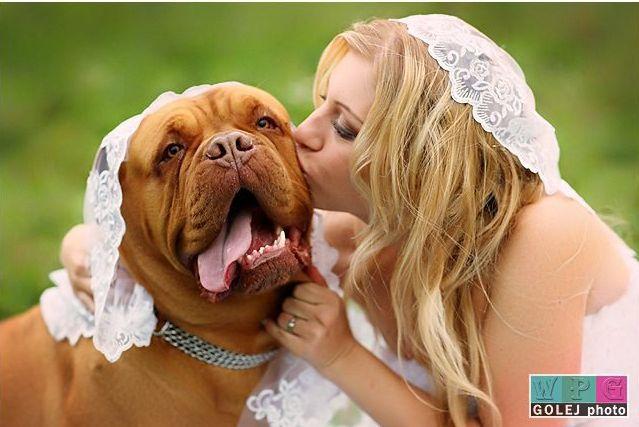 Budeme manželia :) - takúto by som veľmi chcela s našim pejsanom :)