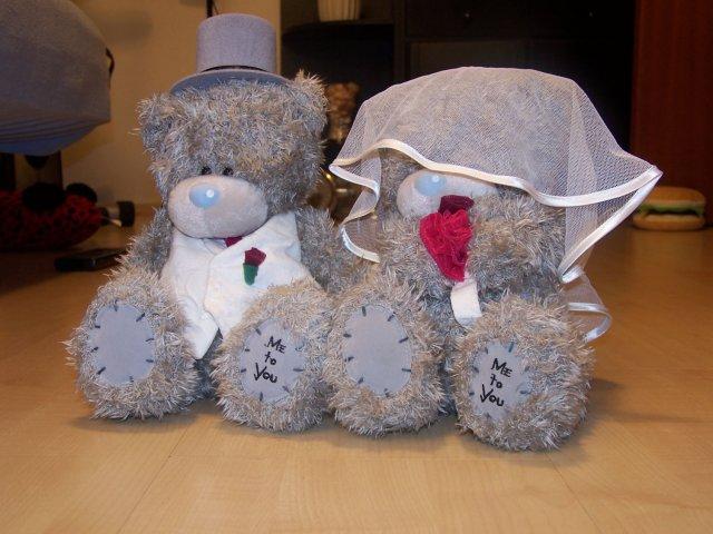 Prvý letný dník 2008 a naša svadba:) - Naši macíčkovia, ktorých dáme na svadobné auto