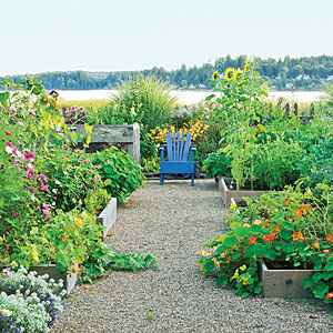 Zahradne inspiracie z netu - Moj sen :)