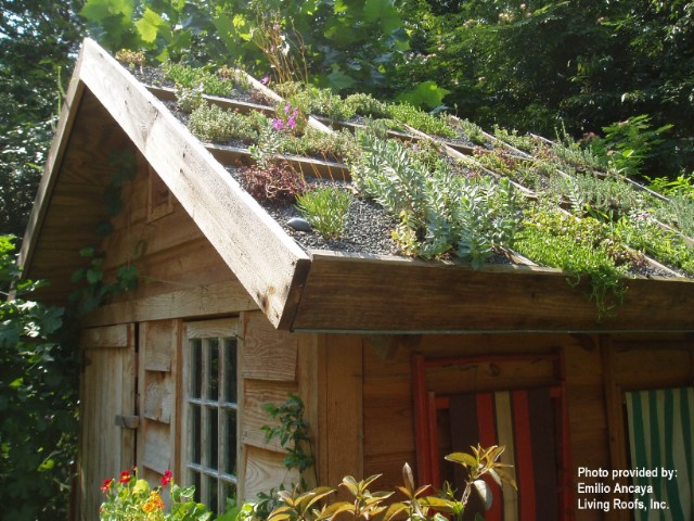 Domček v záhrade - Obrázok č. 3