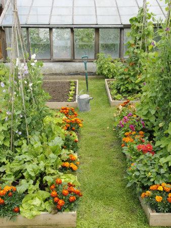 Zahradne inspiracie z netu - Obrázok č. 3