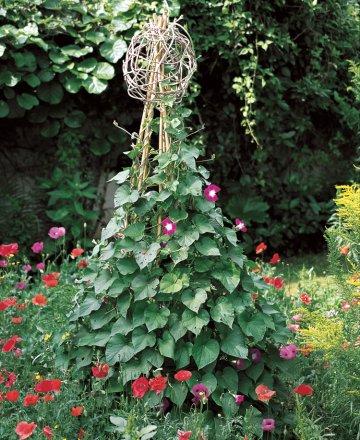 Zahradne inspiracie z netu - Obrázok č. 15