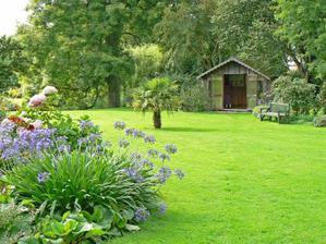 A samozrejme jedna z najdolezitejsich rastlin v zahrade - travnik :)