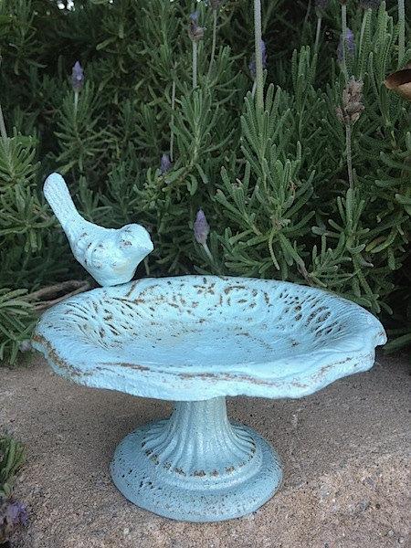 Zahradne inspiracie z netu - Fontánka pre vtáčiky :) Aby sa mohli chodiť kúpať :)