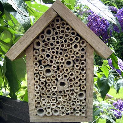 Zahradne inspiracie z netu - Obrázok č. 62