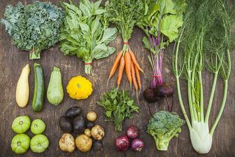 ...cuketu,bielu tekvicu,patizón,špenát a brokolicu tiež :)