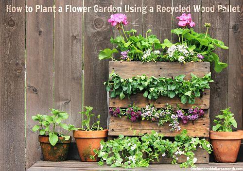 Zahradne inspiracie z netu - Obrázok č. 74