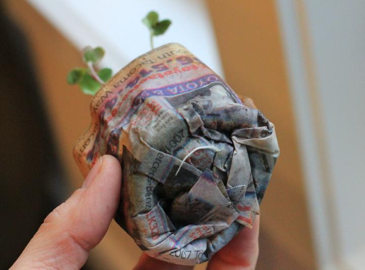 Zahradne inspiracie z netu - nezalepime silno aby korienky mohli von :)