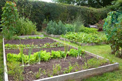 Zahradne inspiracie z netu - Obrázok č. 88