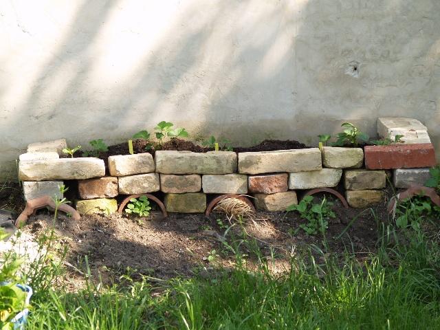 Zahradne inspiracie z netu - Obrázok č. 100