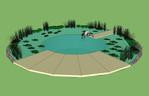 Rastliny miesto chemie - prirodny bazen - Obrázok č. 2