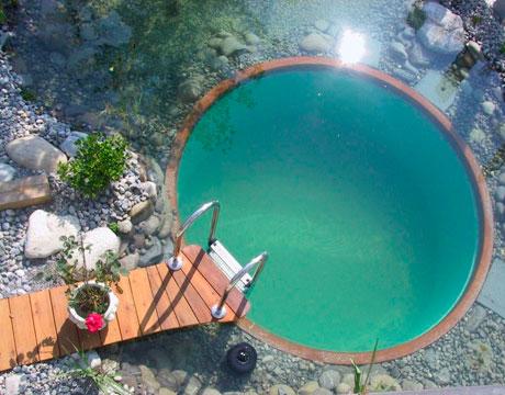 Rastliny miesto chemie - prirodny bazen - Obrázok č. 1