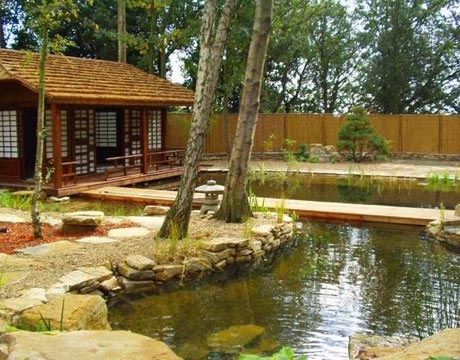 Rastliny miesto chemie - prirodny bazen - Obrázok č. 7