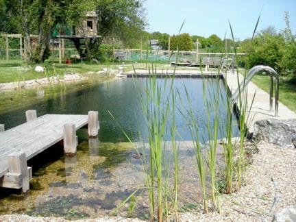 Rastliny miesto chemie - prirodny bazen - Obrázok č. 9