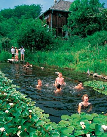 Rastliny miesto chemie - prirodny bazen - Obrázok č. 11