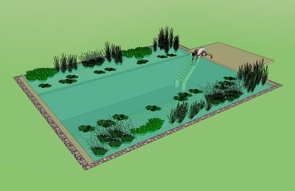 Rastliny miesto chemie - prirodny bazen - Obrázok č. 5