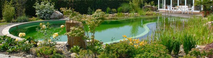 Rastliny miesto chemie - prirodny bazen - Obrázok č. 18