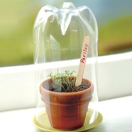 Zahradne inspiracie z netu - Sklenicek :)