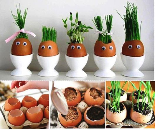 Dobré nápady - Velikonoční osení trochu jinak.