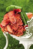 Kvety, kvietky, kvetinky... - Obrázok č. 1