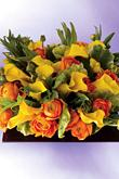 Kvety, kvietky, kvetinky... - Obrázok č. 2