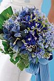 Kvety, kvietky, kvetinky... - Obrázok č. 5