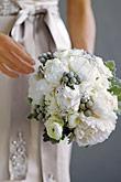 Kvety, kvietky, kvetinky... - Obrázok č. 10