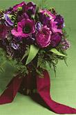 Kvety, kvietky, kvetinky... - Obrázok č. 26