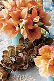Kvety, kvietky, kvetinky... - Obrázok č. 33