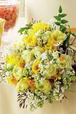 Kvety, kvietky, kvetinky... - Obrázok č. 34