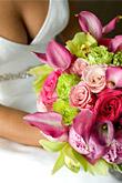 Kvety, kvietky, kvetinky... - Obrázok č. 44