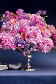 Kvety, kvietky, kvetinky... - Obrázok č. 45