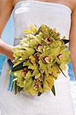 Kvety, kvietky, kvetinky... - Obrázok č. 48