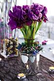 Kvety, kvietky, kvetinky... - Obrázok č. 50