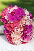 Kvety, kvietky, kvetinky... - Obrázok č. 52