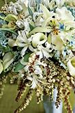 Kvety, kvietky, kvetinky... - Obrázok č. 53