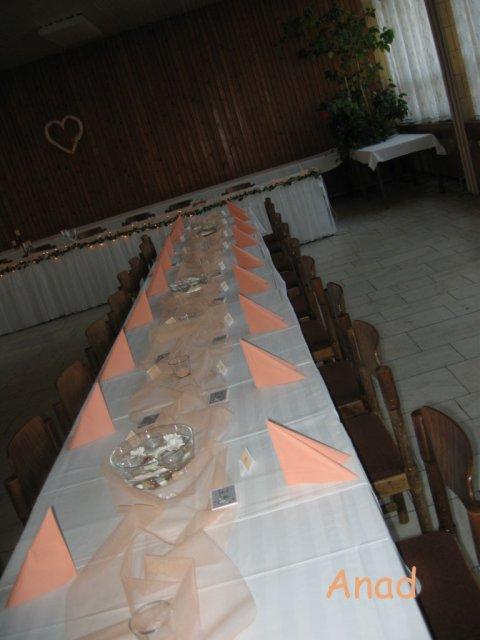 Nase pripravy, vyzdoba a rozne detaili zo svadby - * MARHULKOVY TYL NA 4 STOLY