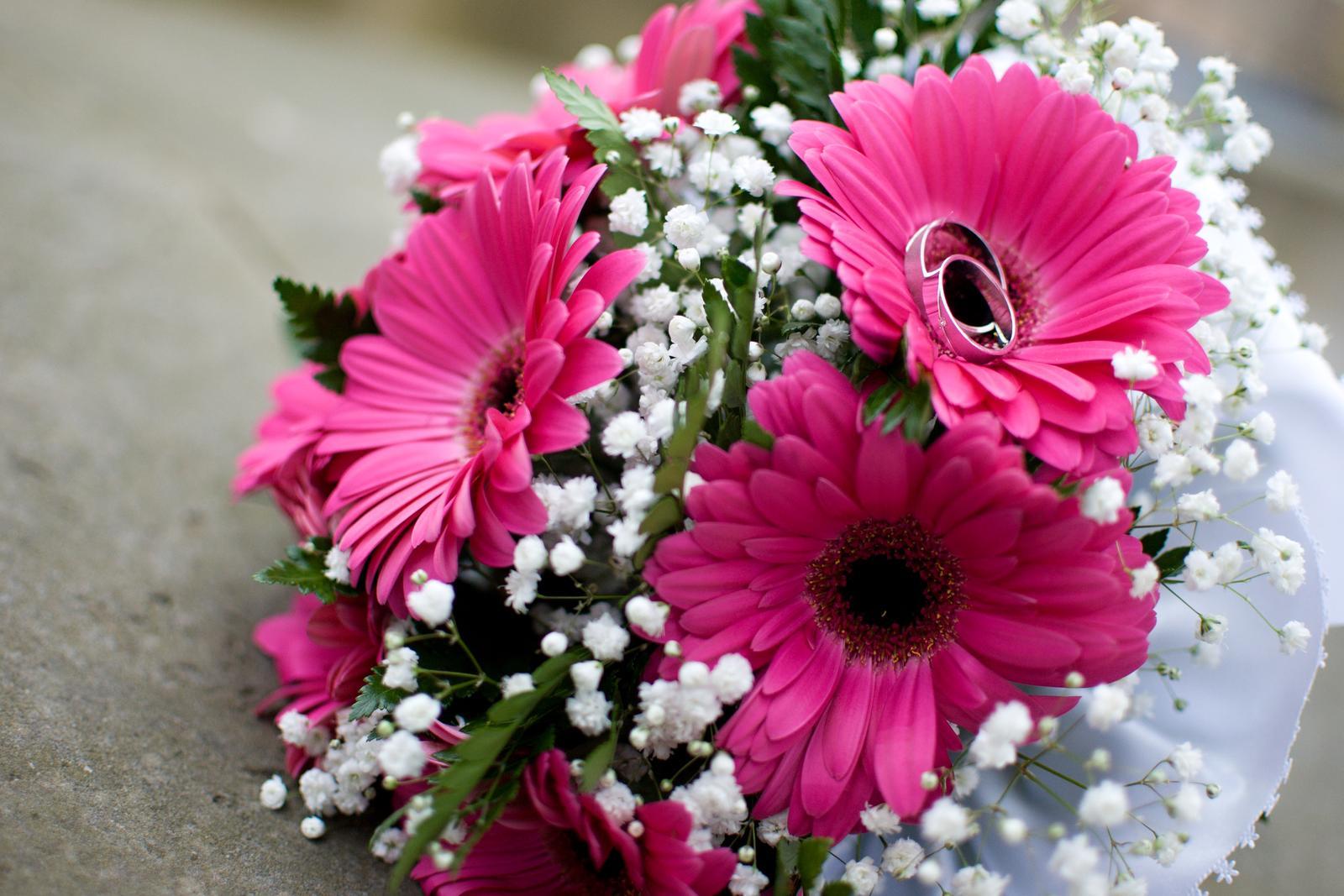 6. črc 2015 v 18 41 • Svatba byla v září 2017 • Odpověz • To se mi líbí • a882ae98a6