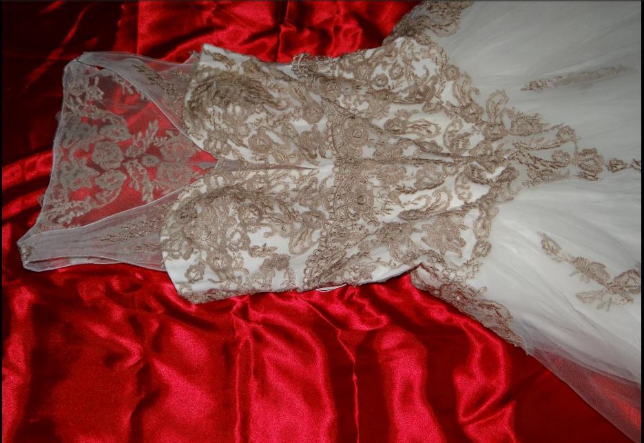 Romantické tylové šaty zdobené krajkou  - Obrázek č. 2