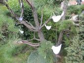 Dekorace - ptáčci na zavěšení,