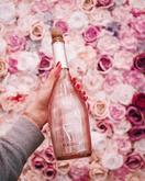Fogoso Rosa - růžové