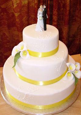 04.07.2009 Velky den! - toto byla nakonec predloha na dort, samozrejme ale predloha nakonec bude dost pozmenena :D