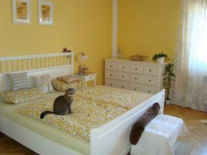 ložnice a kóča v posteli