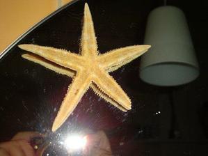 blik hvězdici....(omluvte prosím detaily od pasty:-O)