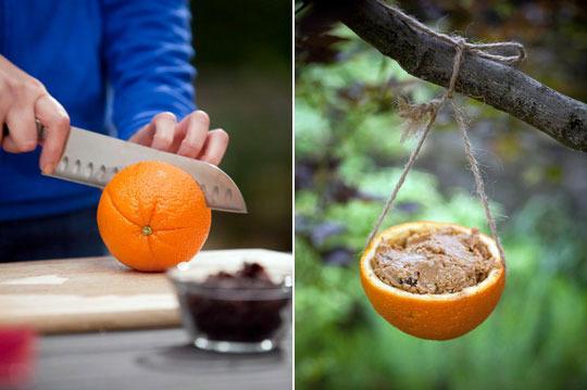 Recyklované a iné nápady ♻ - papanica pre vtáčiky ( o ten pomaranč to drží za pomoci zapichnutej špajdle)