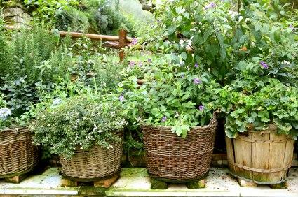 Zahradne inspiracie z netu - Obrázok č. 18